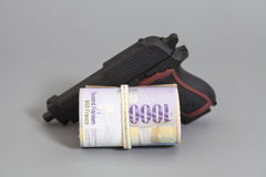 瑞士人在卷和枪的一千法郎 库存照片