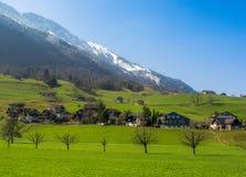 瑞士国家边 免版税库存图片