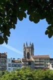 瑞士城市弗里堡地平线和大教堂耸立 免版税图库摄影