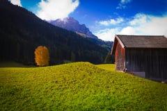 在草坪的瑞士山中的牧人小屋和树 免版税库存照片