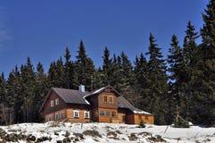瑞士山中的牧人小屋在冬天 免版税库存图片