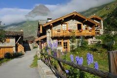 瑞士山中的牧人小屋在阿尔卑斯 免版税库存照片