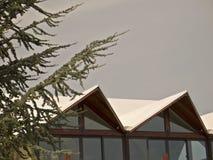 瑞士山中的牧人小屋春天 库存图片