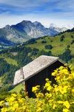 瑞士山中的牧人小屋的一张好的视图 库存图片