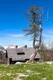 瑞士山中的牧人小屋 库存图片