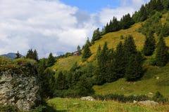 瑞士山中的牧人小屋de l'是,勃朗峰侧面的高山草甸  免版税图库摄影