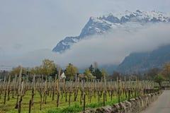 瑞士山农场 免版税图库摄影
