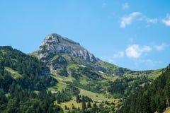 瑞士山峰 免版税图库摄影