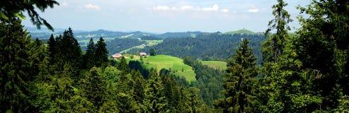 瑞士干酪 图库摄影