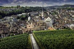 瑞士村庄和葡萄园 免版税库存图片