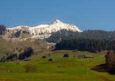 瑞士横向 免版税库存图片