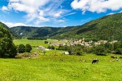 瑞士横向 图库摄影