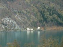 瑞士湖和山森林看法  免版税库存照片