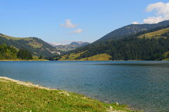 瑞士湖的山 免版税库存照片