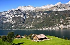 瑞士湖边农场 库存图片