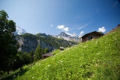 瑞士的阿尔卑斯 库存照片