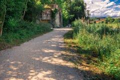 瑞士自然 库存图片