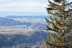 瑞士阿尔卑斯山脉的风景从于特利贝格的 免版税库存照片