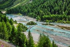 瑞士阿尔卑斯河旅馆和Pontresina 库存照片