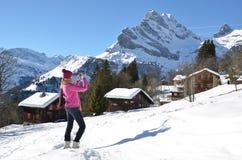 瑞士阿尔卑斯 免版税库存照片