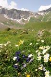 瑞士风景 库存图片