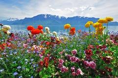 瑞士风景 免版税图库摄影