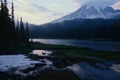 瑞尼尔山云彩、鹿和Reflection湖 库存照片