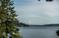 瑞尼尔山看法从Seward公园5的 免版税图库摄影