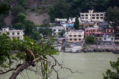 瑞诗凯诗,印度:2013年10月4日-甘加河在瑞诗凯诗,瑜伽资本 库存图片