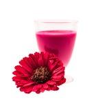 玻璃充分与桃红色鸡尾酒和一朵红色花在白色背景 免版税库存图片