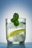 玻璃充满与冰块和装饰的薄荷叶的一份刷新的饮料 免版税库存照片