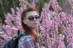 玻璃和一件衬衣的女孩在一朵美丽的桃红色花附近 免版税库存图片