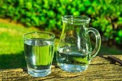 玻璃和投手用纯净的水在木日志,绿草,树在背景,明亮的晴天中 免版税图库摄影