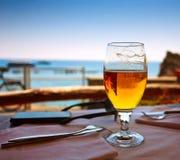 玻璃啤酒海 免版税图库摄影