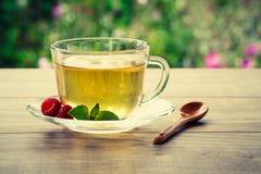 玻璃杯子与切片的绿茶柠檬,薄菏叶子, fres 免版税图库摄影