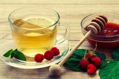 玻璃杯子与茶碟的绿茶和切片柠檬,地方教育局 库存图片