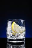 玻璃杯水用柠檬 库存照片