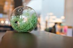 玻璃球的压缩空气装置 库存照片