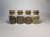 玻璃瓶子用美味食物- Chia,芝麻的南瓜籽 免版税库存图片