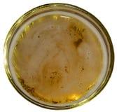 玻璃用啤酒,低泡沫 库存图片