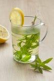 玻璃用柠檬马鞭草属植物茶 免版税库存图片
