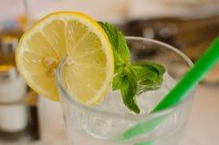 玻璃用柠檬水、薄菏柠檬、叶子和冰块 免版税库存图片