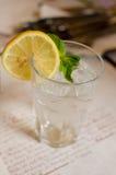 玻璃用柠檬水、薄菏柠檬、叶子和冰块 库存照片