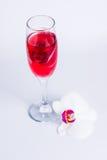 玻璃用红葡萄酒和兰花 免版税库存照片