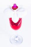 玻璃用红葡萄酒和兰花 免版税图库摄影