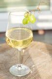 玻璃白葡萄酒 图库摄影