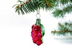 从玻璃的圣诞节葡萄酒减速火箭的装饰红色玩具无核小葡萄干莓果 免版税库存照片