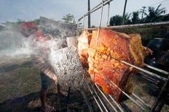 从玻璃的太阳烤猪肉 免版税图库摄影