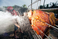从玻璃的太阳烤猪肉 库存照片
