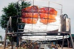 从玻璃的太阳烤猪肉 免版税库存照片